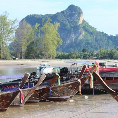 A photo of longtail boats on a river in Thailand, captured by a Conservation volunteer in Asia.